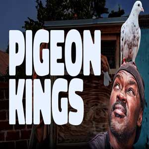 سلاطین کفتربازی | Pigeon Kings